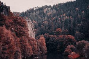 Svatos Rocks 2